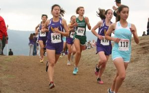 Cross country CCS: Girls and boys place fourth and sixth respectively