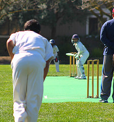 The Other Ball Game: Students struggle to pursue their passion for cricket in America