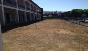 New plan brainstormed for the land in front of Building A