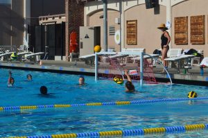 Girls water polo: Team looks forward to upcoming season with new coaches