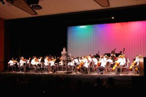 Music department holds instrumental debut concerts