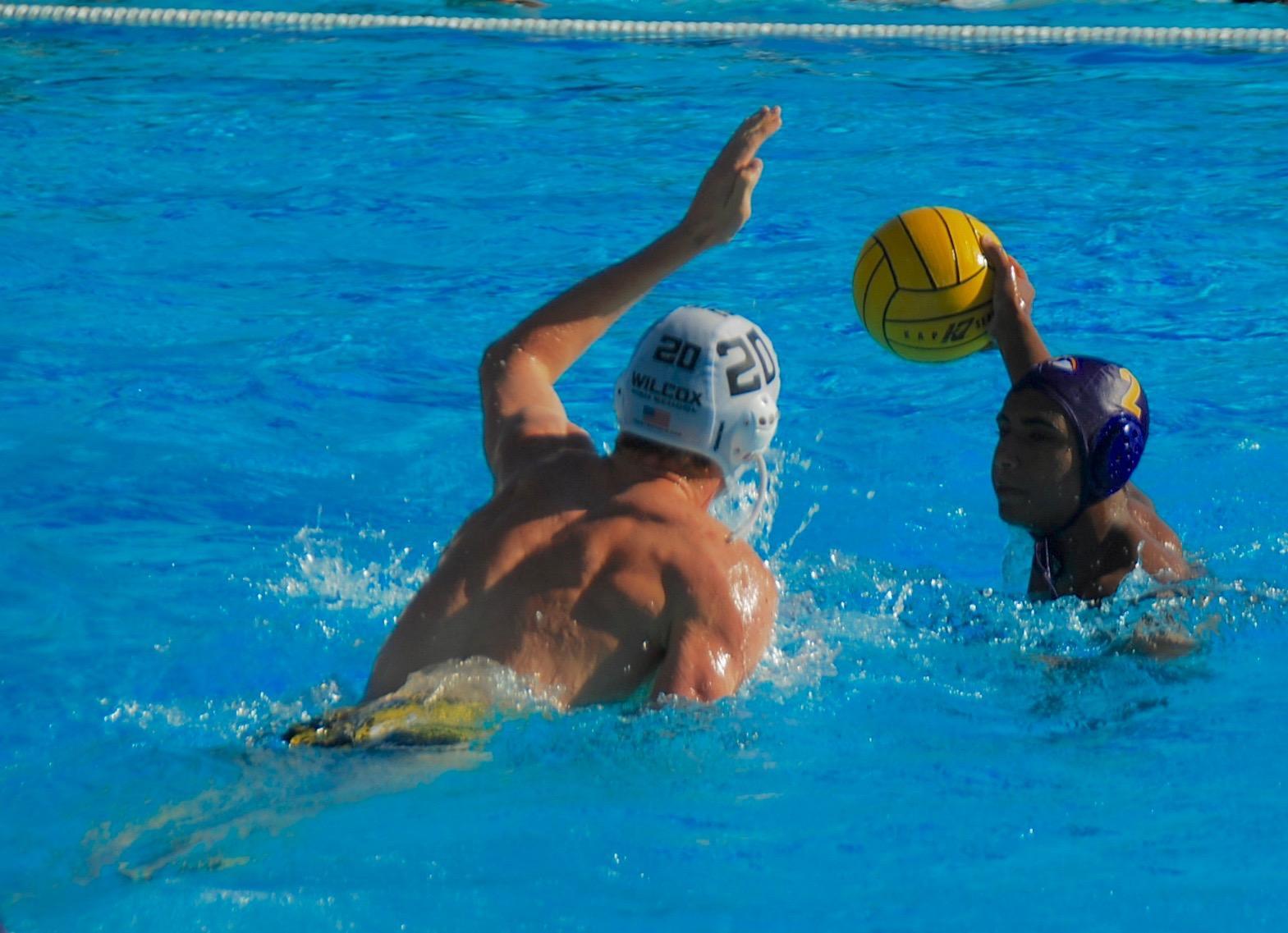 Photo gallery: Boys water polo defeats Wilcox HS