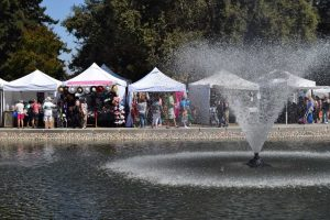 Community bonds over artwork at the annual Art and Wine Festival