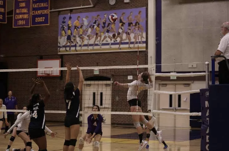 Girls volleyball: Senior Ellie Cary's journey in volleyball