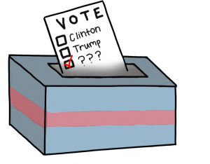 None of the above: Third party candidates are not considered a viable option