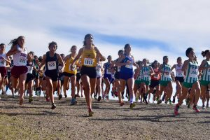 Cross country: CCS appearance marked with top 10 finish