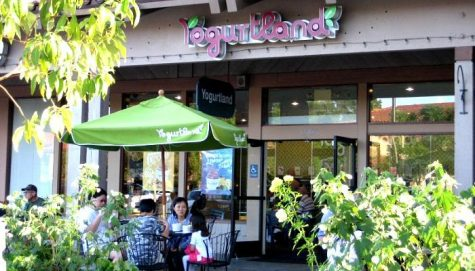 Han Kook club holds Yogurtland fundraiser