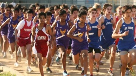 Cross country CCS: Team goes to Nov. 12 CCS qualifiers