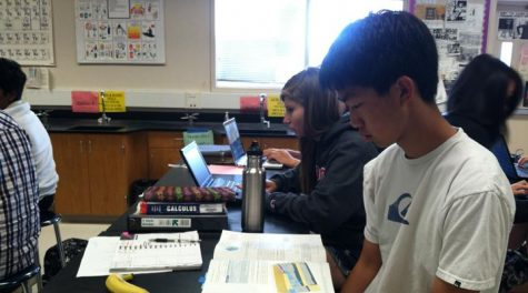 Junior Stephen Ting places top 20 in Chemistry Olympiad