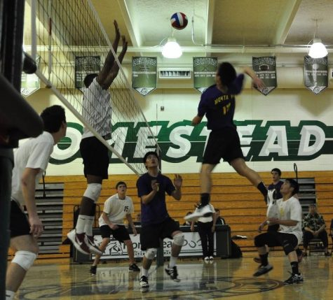 Junior Cory Low takes a powerful swing past Homestead blockers as teammates seniors Jeffrey Zhang and Edward Wang look on. Though the Matadors won the first set, they lost the game 3-1. Photo by Cynthia Mao.