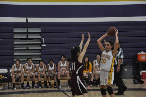 Girls basketball: Turnovers and slow start lead to 37-46 loss
