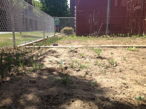 Matador Meadow: A positive venture for students