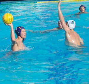 Boys Water Polo: Matadors fall to Vikings in the last moments