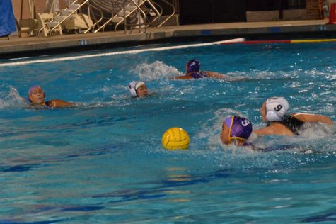 Girls Water Polo: Lady Mats suffer 8-1 loss to Mountain View High School
