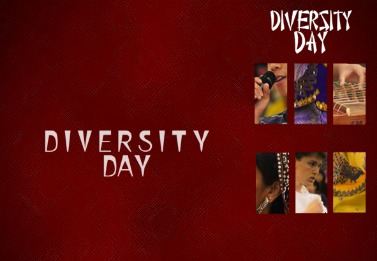 INTERACTIVE GRAPHIC: Diversity Day 2011