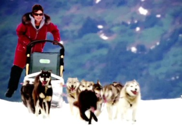Television: Top 5 reasons to watch 'Sarah Palin's Alaska'