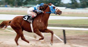 Movie: 'Secretariat' races away from success