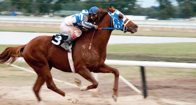 Movie: Secretariat races away from success