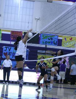 Girls volleyball victory at senior night