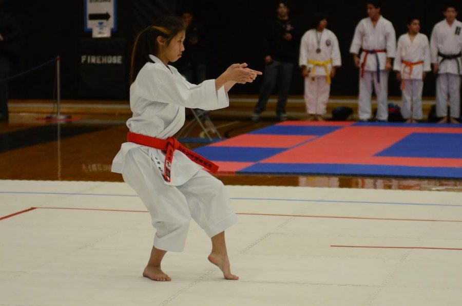 STAND+READY+Kaneda+performs+the+%22unsu%22+kata+at+the+2012+Regional+Championships.+Unsu+is+one+of+the+most+advanced+katas.+