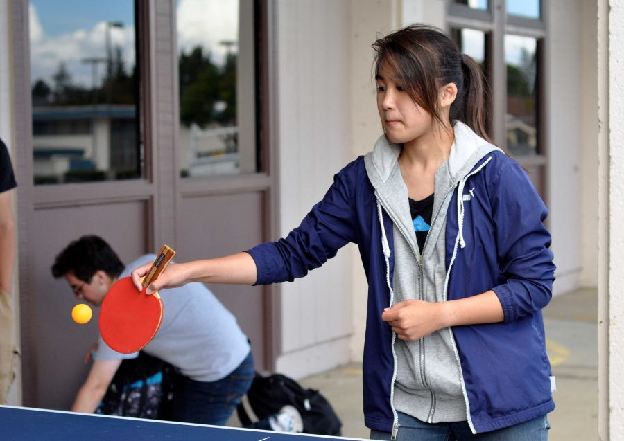 PHOTO GALLERY: Table Tennis club