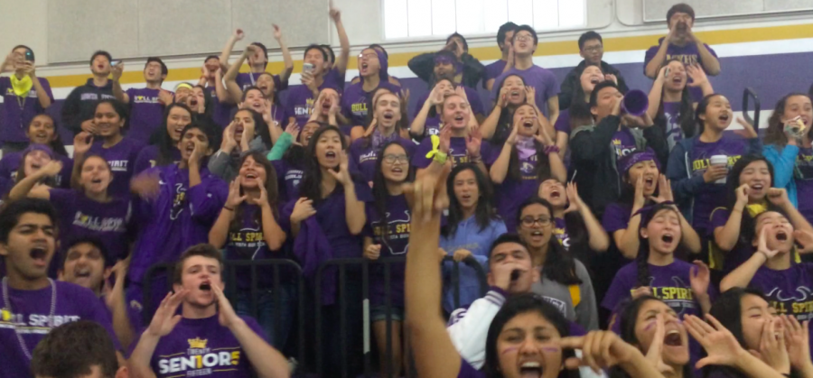MVHS falls to Lynbrook High School in IDC Fantastics rally