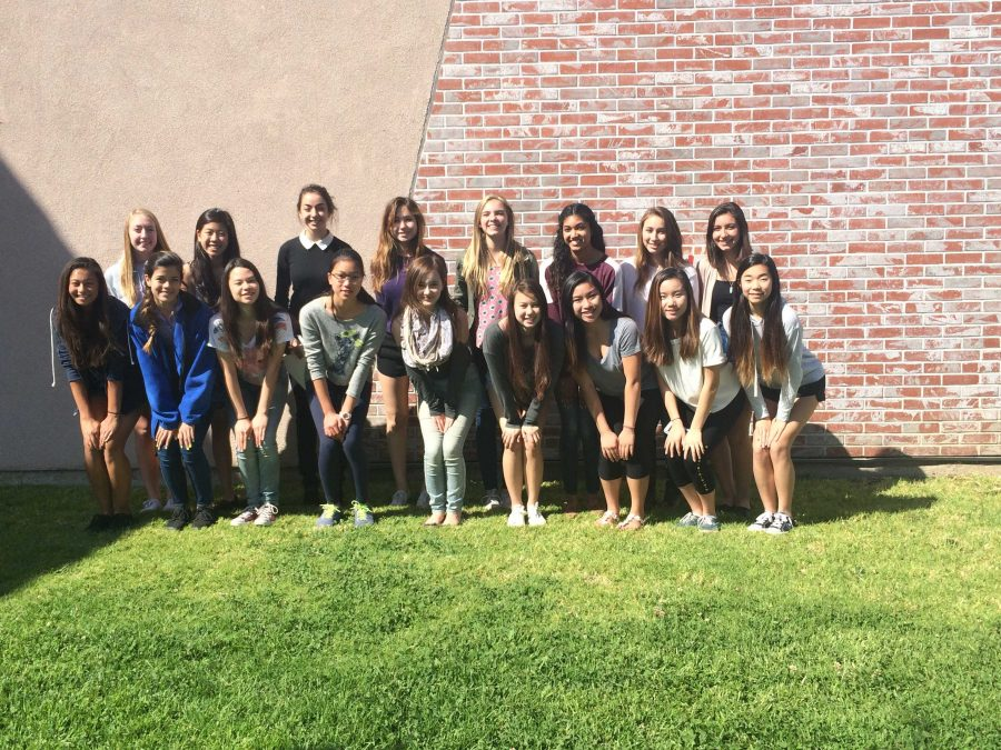 2015-2016 cheer team selected