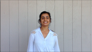 Video/Q&A: Raas members teach basic steps and prepare for tryout process