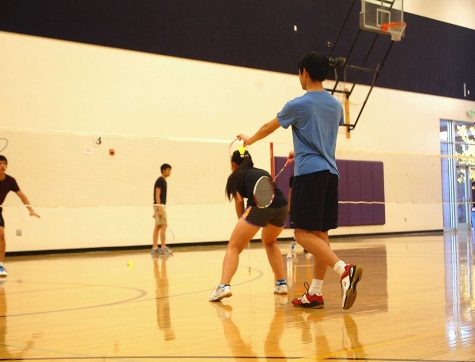 Badminton Club: Purpose of open gyms