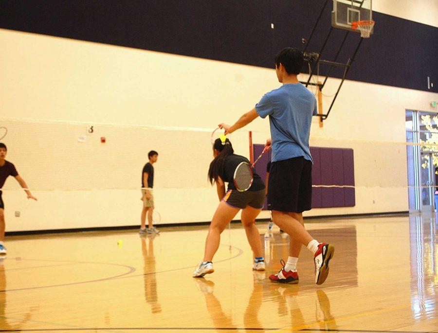Badminton Club: Purpose of open gyms