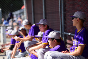 Baseball: 2016 season comes to a close after second straight CCS quarterfinal apperance