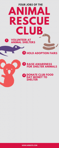A year in review: Animal Rescue Club
