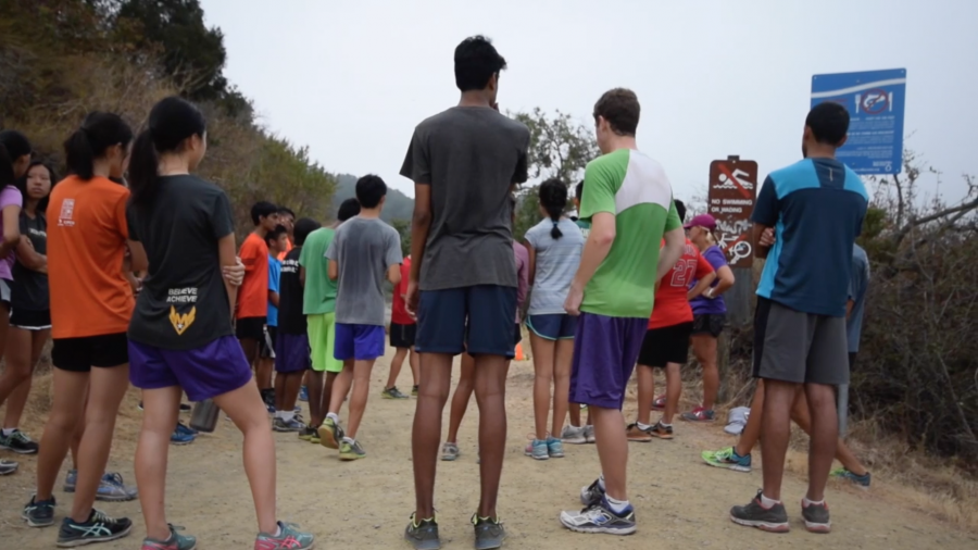 Cross country: Team highlights its drive for success