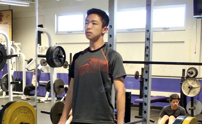 Analyzing the benefits and drawbacks of weight training