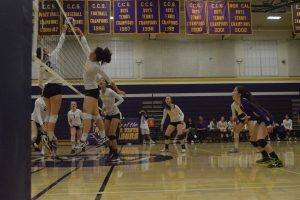 Girls volleyball: Team defeats Los Gatos for first time in 17 years