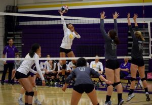 Girls volleyball: Team takes win from Homestead HS
