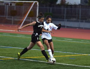 Photo gallery: Girls soccer ties 2-2 with Wilcox HS