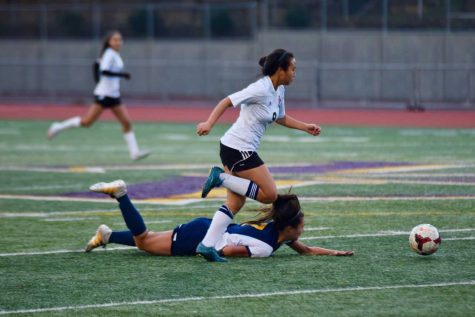 Sports Flash: Photos from MVHS athletics