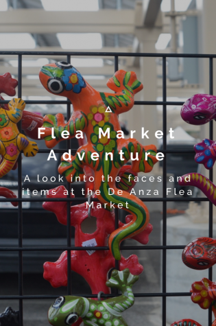 Flea Market Adventure: A look into the faces and items at the De Anza Flea Market