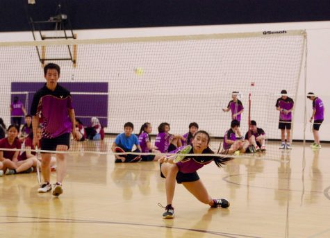 Photo gallery: Badminton victorious over rival Cupertino HS