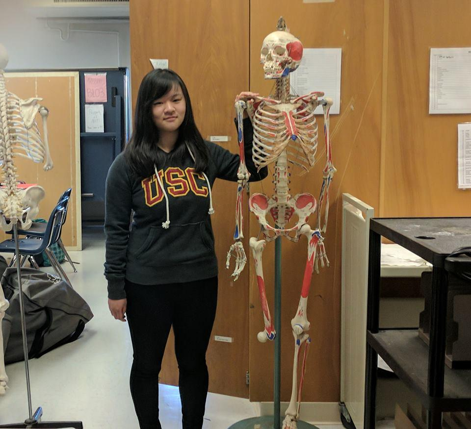 Junior+Gina+Yang+stands+with+a+model+skeleton%2C+affectionately+known+as+Sherman%2C+in+the+Biology+TA+area.+Yang+has+both+taken+AP+Biology+with+teacher+Renee+Fallon+and+assisted+her+as+a+TA.