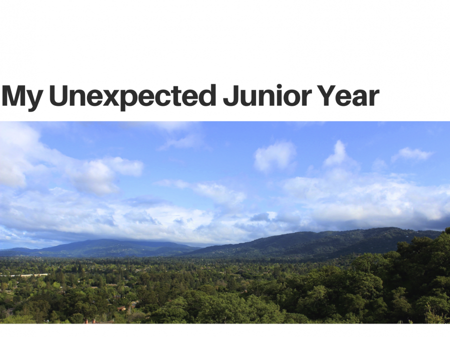 My+unexpected+junior+year