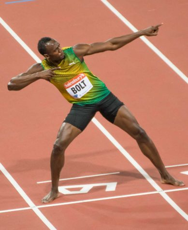 Professional sports update: Summer sports recap