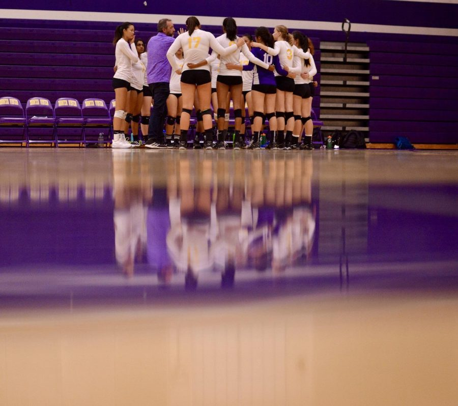 New+year%2C+new+season%3A+Volleyball+club+strives+for+a+successful+season