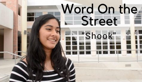 Word on the street: shook