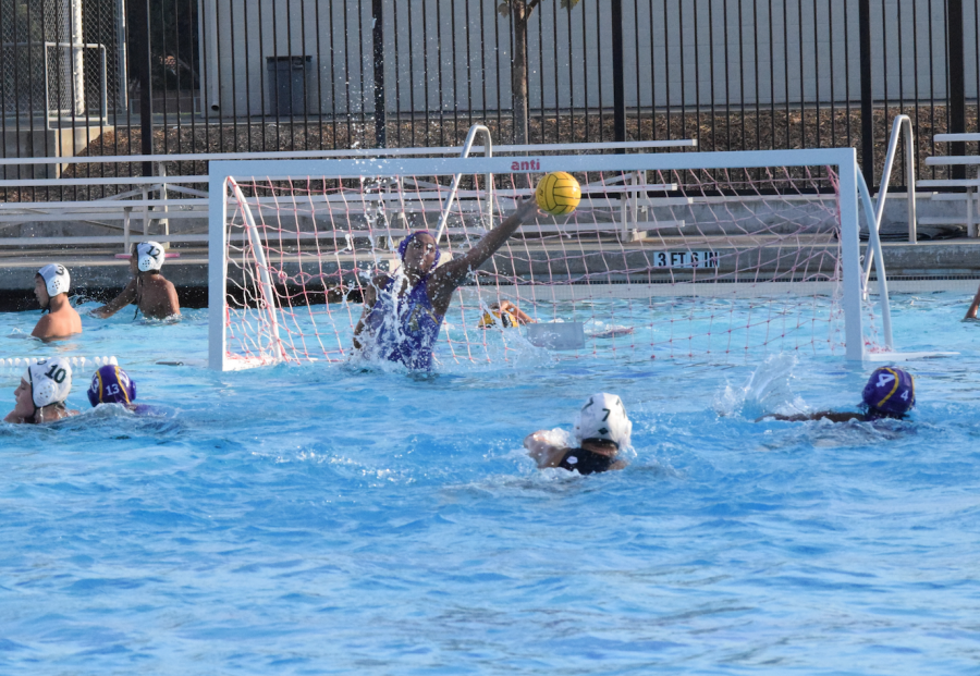 Girls+water+polo%3A+Team+victorious+in+must-win+game+against+Harker+HS