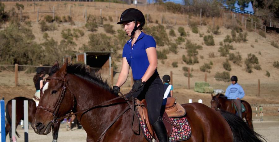 Riding West: Westelius siblings bond over horseback riding