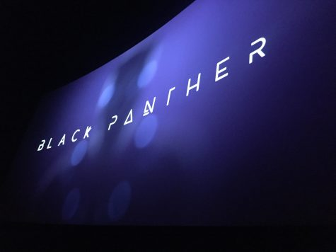 "Duo Review: ""Black Panther"""