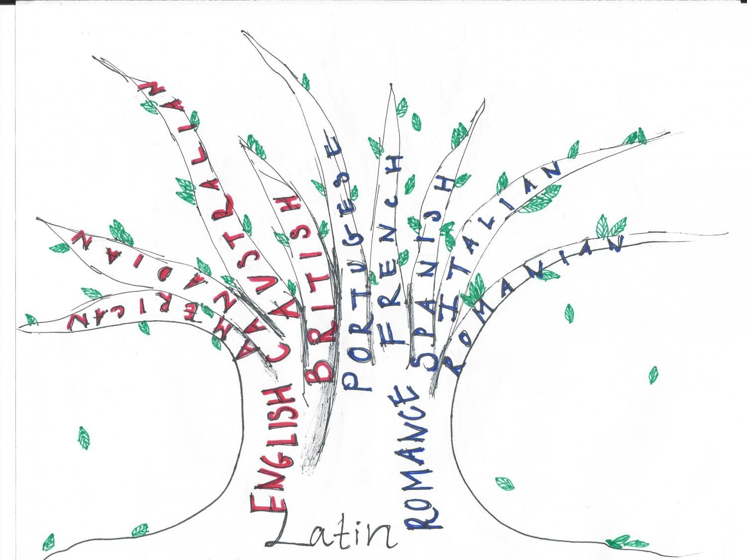 A tree depicting Linguistic Evolution through Latin roots. Graphic | Dhruvika Randad