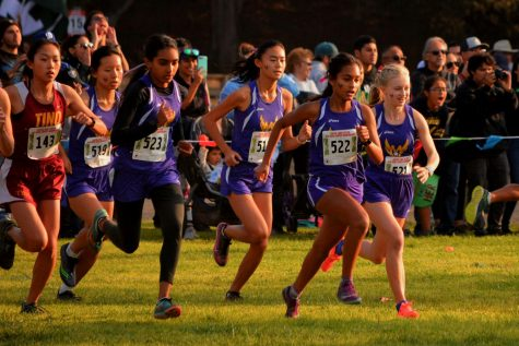 Members of the girls XC team start their race in the CCS championship which took place in Salinas, California. Photo used courtesy of Monta Vista X-Country & Track/Fields.